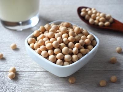 ダイエットに効果的なプロテインの取り入れ方|NOA ONLINE YOGA & FITNESS